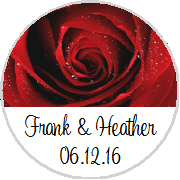 Kisses Wedding - KISS WD_50 - Large Red Rose